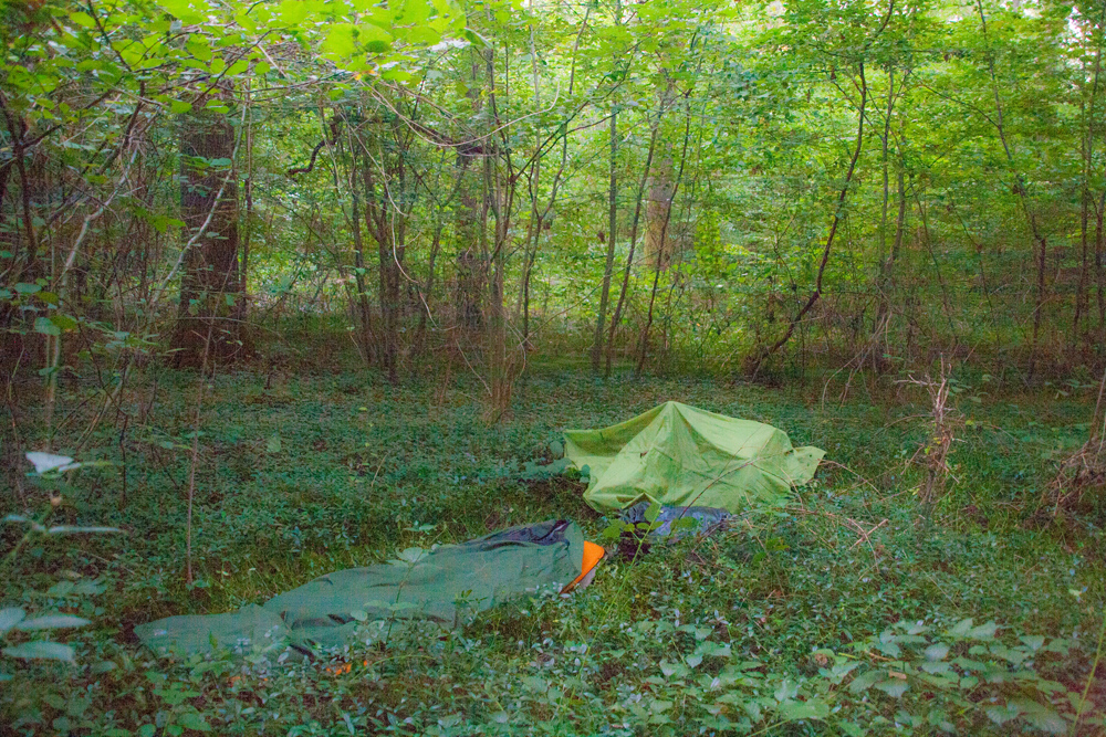 bivvy-in-the-woods